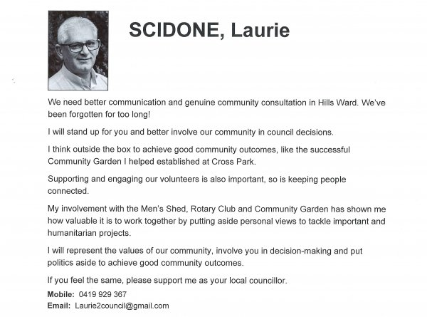 Laurie Scidone, Hills ward