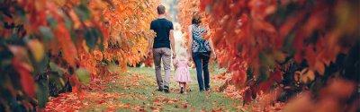 Autumn Armadale hills experience